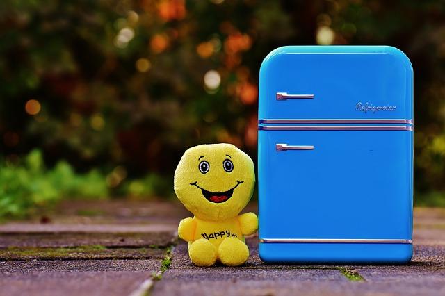 full-fridge-1729679_640