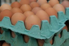 eggs-1887395_1920